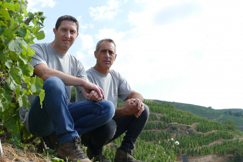 We are two brothers : Benjamin et David. - Cote-Rotie and Condrieu